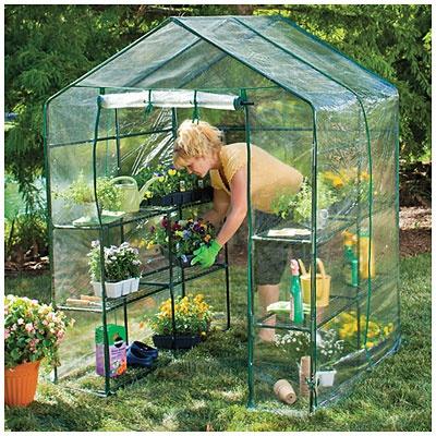 village green walk in greenhouse at big lots plants