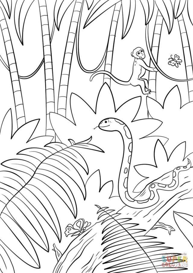 b50867002c4d6a8c03164a352b6d8c6d » Jungle Scene Coloring Pages