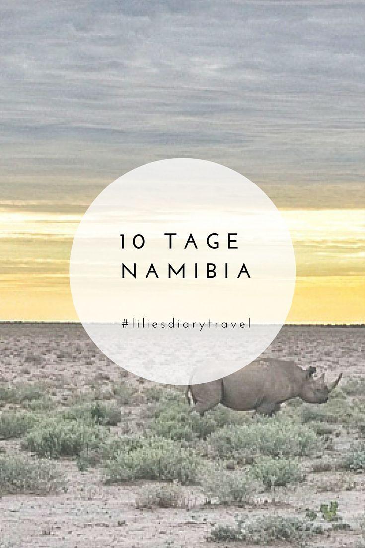 10 Tage Rundreise durch das wunderschöne Namibia! #namibia