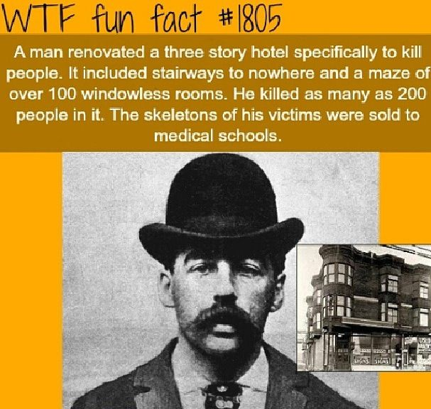 He Is Coming For Sure Horror Movie Quote: 203 Best Images About WTF Fun Facts On Pinterest