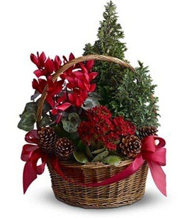 decoracion piñas para navidad - Buscar con Google
