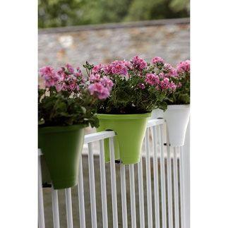 De beste balkonbakken om een moestuin in te beginnen. Elho Flower Bridge Corsica  balkonbakken, balkon moestuin,groenten kweken, kruiden kweken, fruit kweken, balkon railing,  balkon ontwerp, moestuin bak, elho, flower bridge corsica