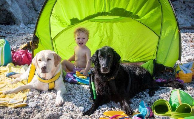vacanza in campeggio con bimbi e cani