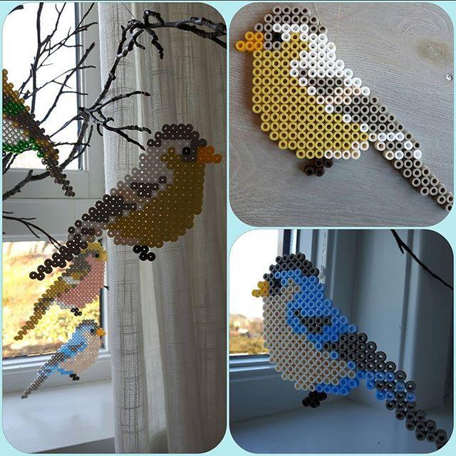 Birds hama beads by skoglundsiri