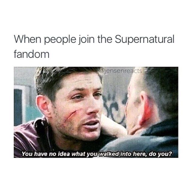 The Supernatural Fandom