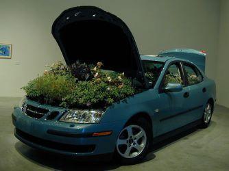 Fabriquez un désodorisant pour votre voiture avec cette astuce