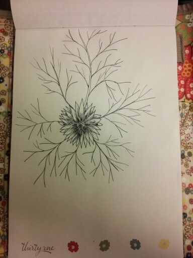 Pen and ink  mystery flower