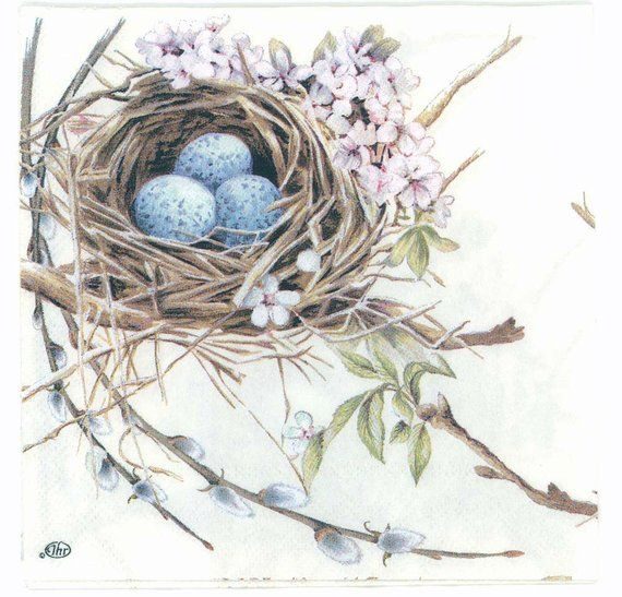 4 Decoupage Napkins Robin Bird Nest With Eggs Bird
