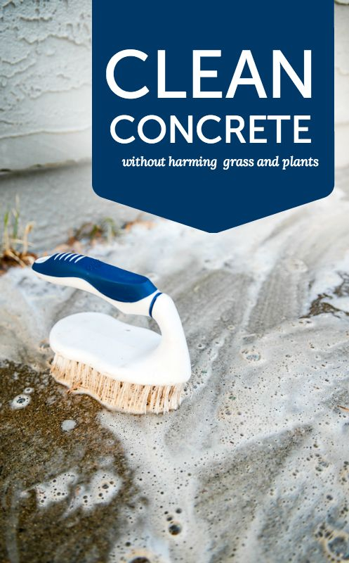 How to clean concrete without harming plants