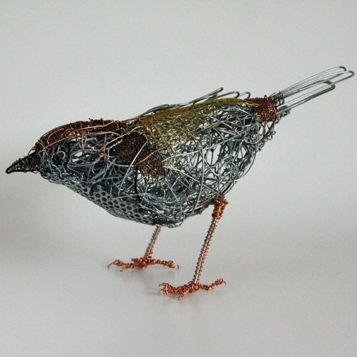The essence of the bird beautifully captured in wire #BeetlesBugsBirds #ChrisMoss