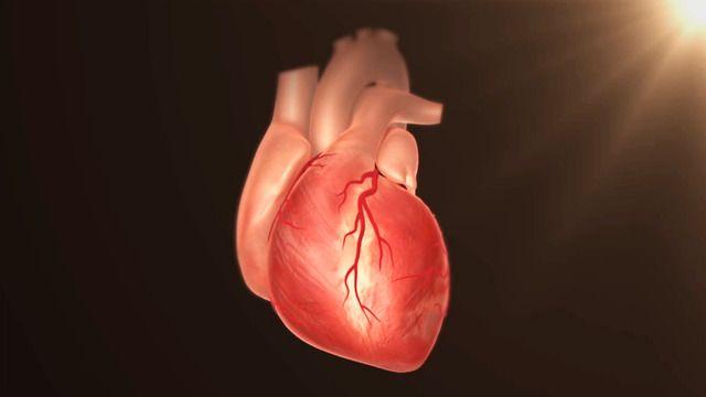 Våra sjukdomars historia: Hjärtsjukdomar