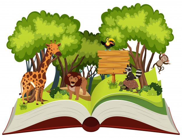 Wild Animal And Jungle Theme Pop Up Book Animals Wild Jungle Theme Pop Up Book