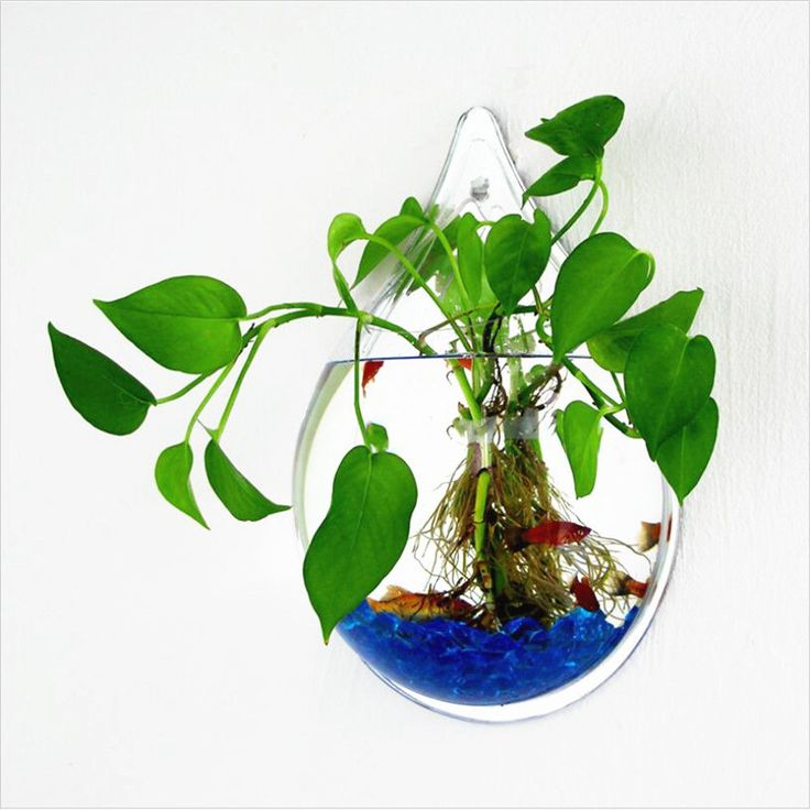 Transparent Flower Pot Bubble Fish Tank Ornaments Hanging Planters Glass Pots  #TransparentFlower