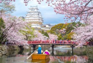 Japans Near-Zero Savings Rates and Pension Problems Drive Retail Investors to Bitcoin