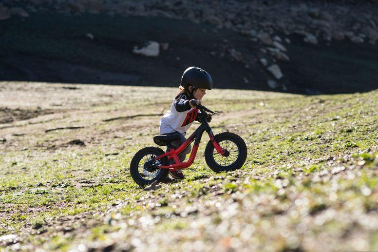 Laufräder statt Stützräder | Kinderfahrradfinder