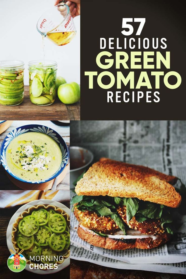 57 Fresh & Easy Green Tomato Recipes You'll Want to Make Tonight via @morningchores