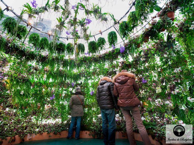 13 best les jardins suspendus de babylone images on Pinterest ...