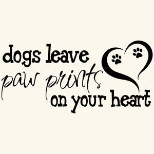 You will always be in all our hearts Nikki<3 We love you & miss you!! #dogquoteslove