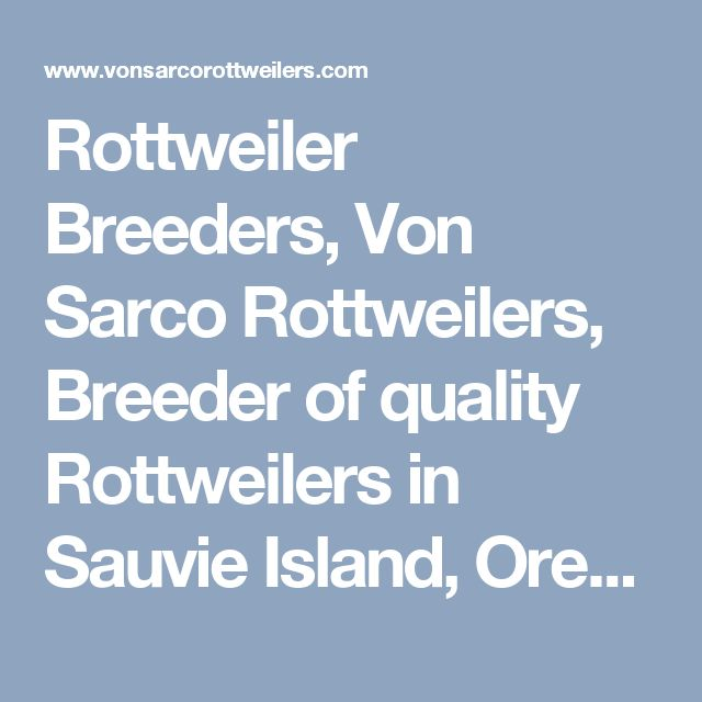 Rottweiler Breeders, Von Sarco Rottweilers, Breeder of quality Rottweilers in Sauvie Island, Oregon