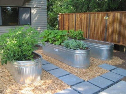 My kind of garden. :) raised garden in galvanized containers  I want my galvanized trough on wheels so I can grow a mobile screen for our yard.