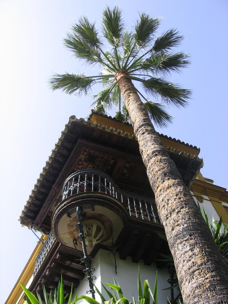 Casa Alfaro, en el Barrio de Santa Cruz de Sevilla. Un balcón inmejorable a los jardines de Murillo, donde pronto inauguraremos un restaurante.