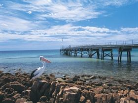 Emu Bay is on Kangaroo Island.
