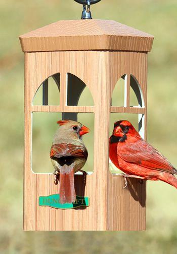 Pair of Cardinals enjoying a snack from the Duncraft Split Window Bird Feeder