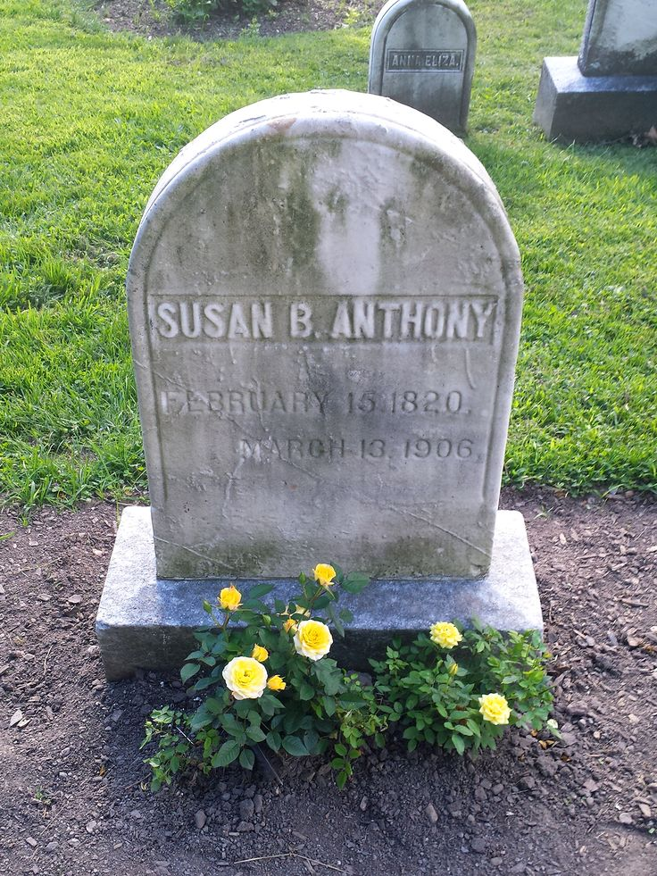 Susan B. Anthony - Social Reformer. One of the most famous suffragettes, she traveled, lectured and canvassed the nation for the vote for over sixty years while also advocating the abolition of slavery, women's rights to their own property and earnings, and the right to organize and belong to women's labor organizations.