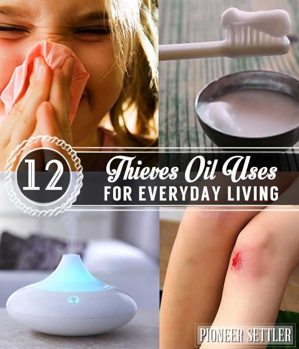 12 Thieves Oil Uses for Everyday Living | Effective Remedies And Uses for Thieves  Oil by Pioneer Settler at http://pioneersettler.com/12-thieves-oil-uses-everyday-living/