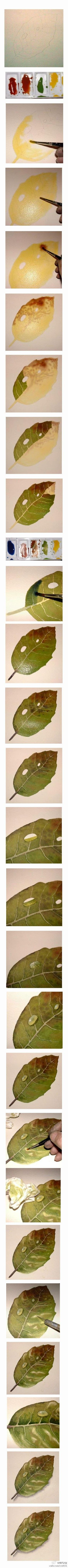 Watercolor step by step tutorial for painting a leaf.