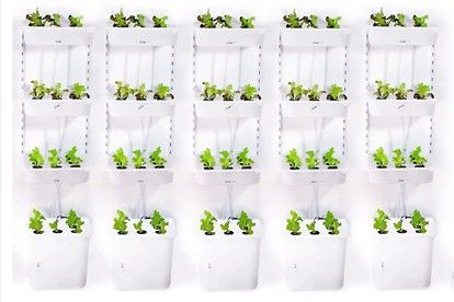 Ikea Boxes Turned Hydroponic Gardens