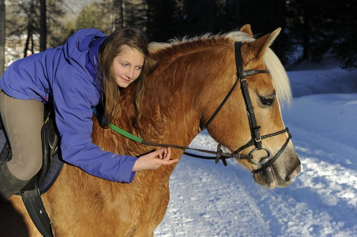 <3 Enjoying winter riding with Haflinger horses <3