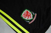 2016 Wales Soccer Team Euro Cup Black Replica Soccer Shorts [C906]