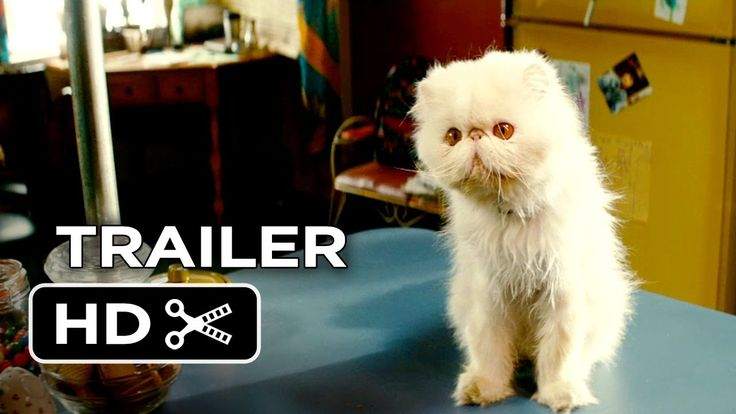 The Right Kind Of Wrong Official Trailer #1 (2014) - Catherine O'Hara Movie HD