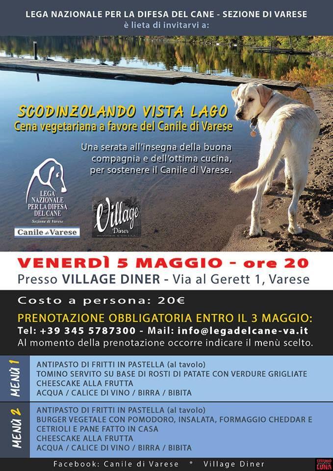 5/5 Scondinzolando vista lago - Cena di #beneficenza a favore del #canile di #Varese