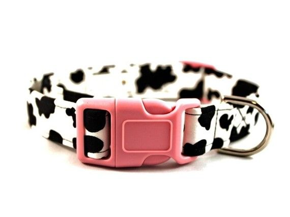 Holy Cow  Cow Print Dog Collar by by JennieBGoodeCollars on Etsy, $16.50