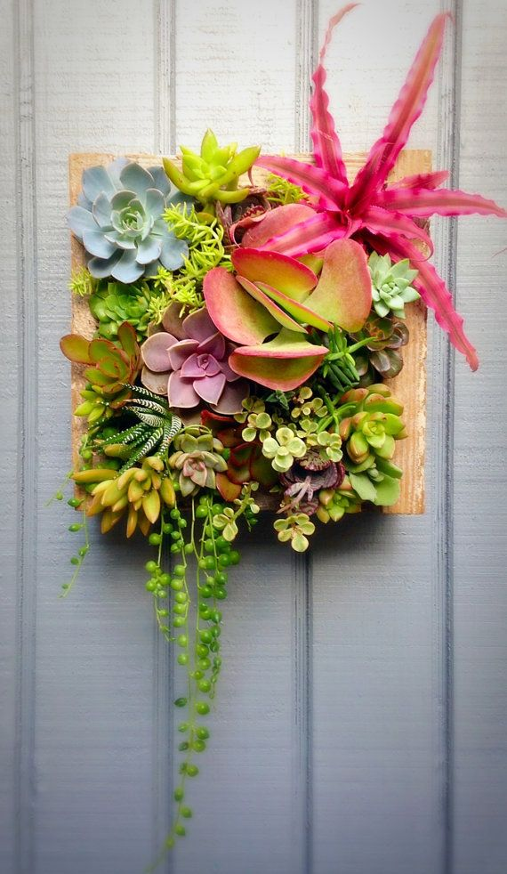 LOVE ETSY! this lady is amazing!!! Succulent Living Planter Vertical Succulent by RootedInSucculents