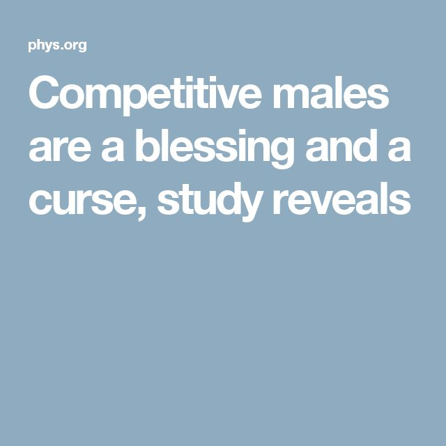 Competitive males are a blessing and a curse, study reveals