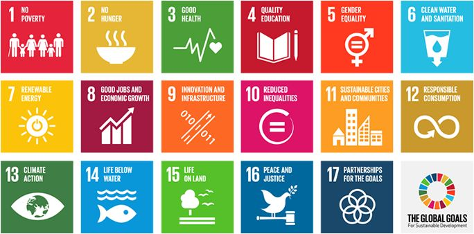 The UN launches their #GlobalGoals today. Click this graphic to find out why STF supports goals 4 and 5.