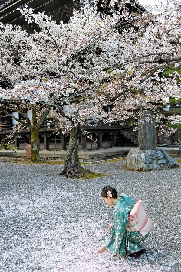 Kyoto Japan, I have a kimono almost like this