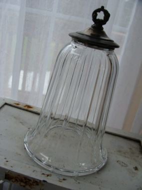 DIY cloche made with a glass candle or lamp sconce and cast off silver lid! ♥♥ | protractedgarden
