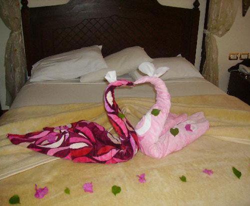 Animal Towel Sculpture