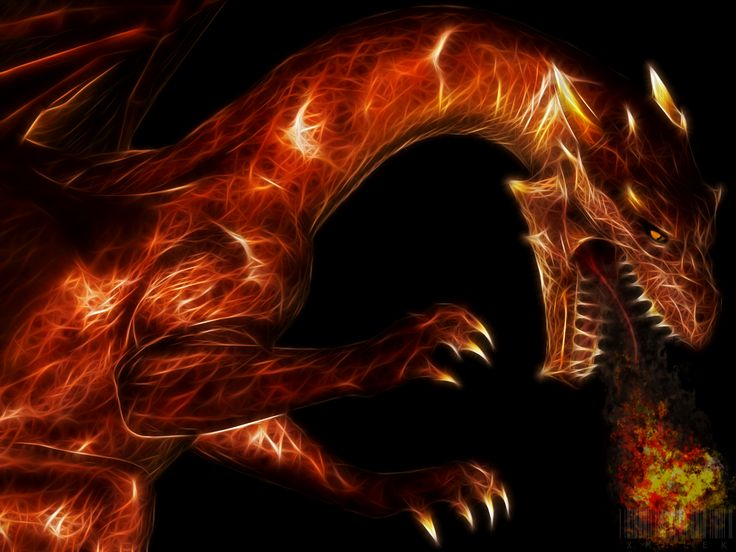 Warlocks Dragons: 17 Best Images About Dragons