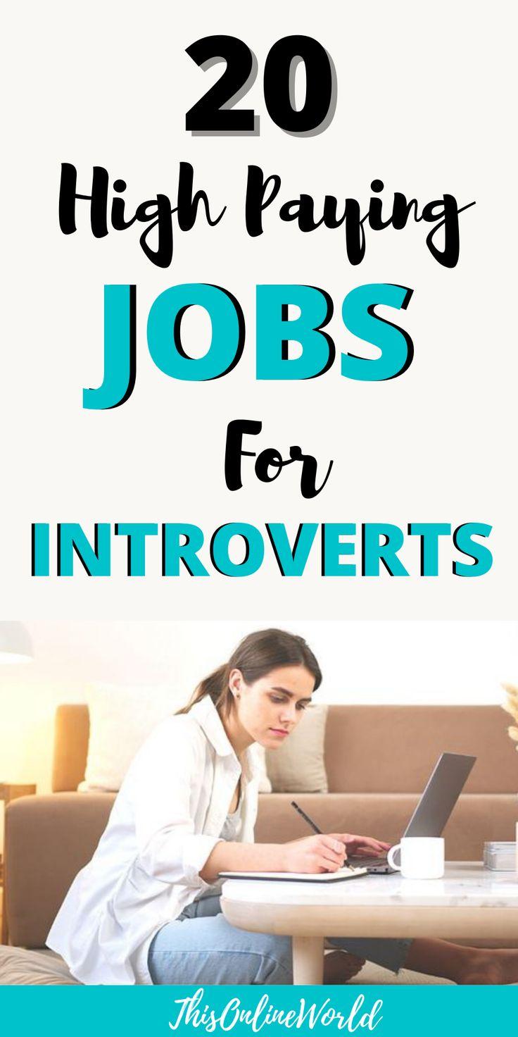 The 20 Best Jobs For Introverts Online & Offline Career