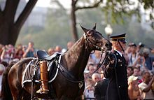 The riderless horse, Sergeant York, with Reagan's own riding boots reversed in the stirrups