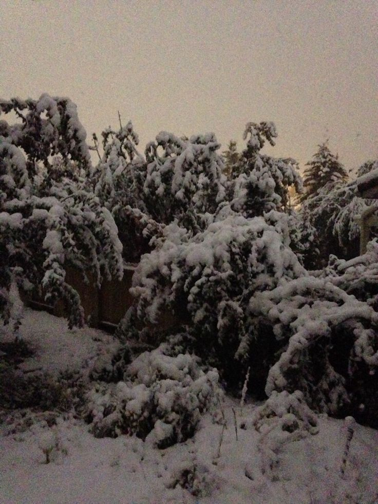 Summer snowfall, September 10, 2014