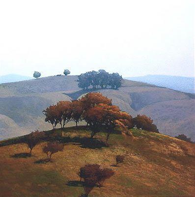 Marc Bohne |  Hills near Chico.  California Landscapes