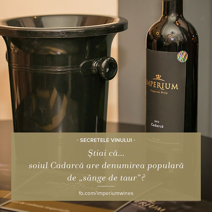 """Știai care este denumirea populară a soiului românesc Cadarcă? """"Sânge de taur"""". Încearcă unul dintre cele mai puternice vinuri din podgoriile Minișului: http://lovewine.ro/vinuri/vinuri-romanesti/imperium-wines/vin-rosu,-cadarca,-imperium-wines,-vin-sec,-vin-romanesc,-vin-de-minis,-vin-de-calitate-1877.html"""