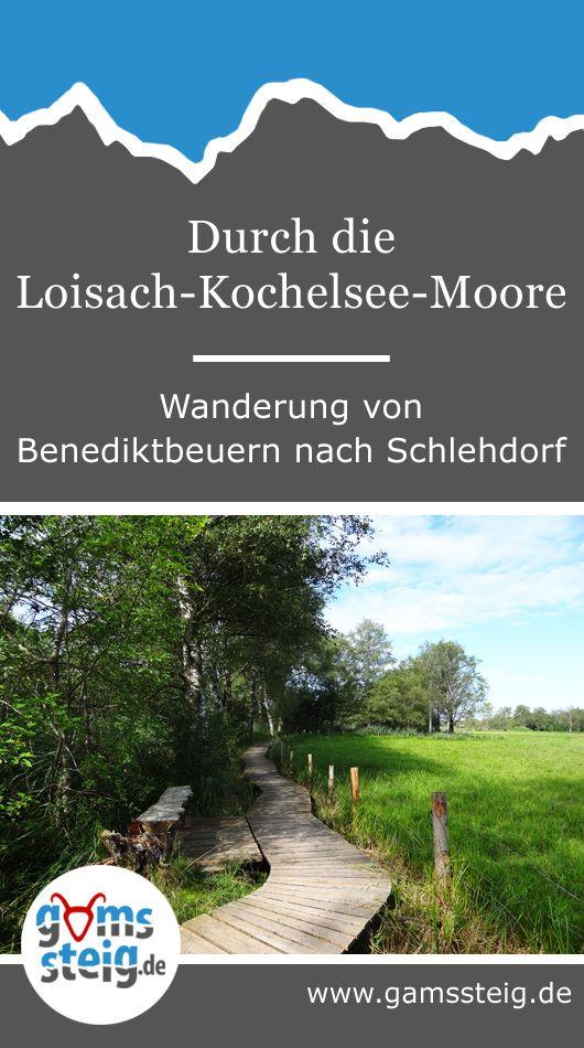 Loisach-Kochelsee-Moore: Wanderung von Benediktbeuern près de Schlehdorf  – Wandern am Kochelsee und Walchensee in Bayern