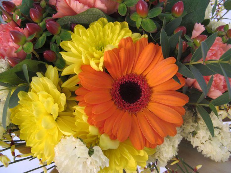 fiori, gerbere, crisantemi, garofani